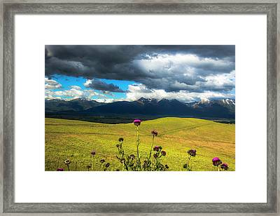 Green Hills And Stormy Skies Framed Print by Amy Sorvillo