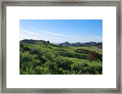 Framed Print featuring the photograph Green Hills Landscape With Cactus by Matt Harang