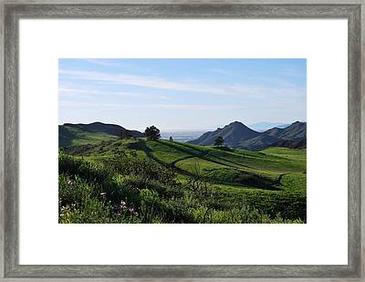 Framed Print featuring the photograph Green Hills Purple Flowers Foreground  by Matt Harang
