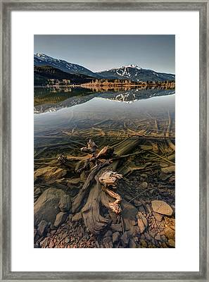 Framed Print featuring the photograph Green Lake Ironwood by Pierre Leclerc Photography