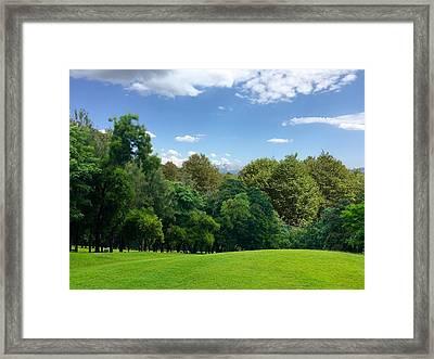 Green Land Framed Print