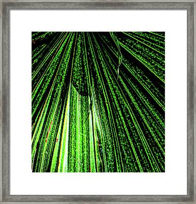 Green Leaf Forest Photo Framed Print