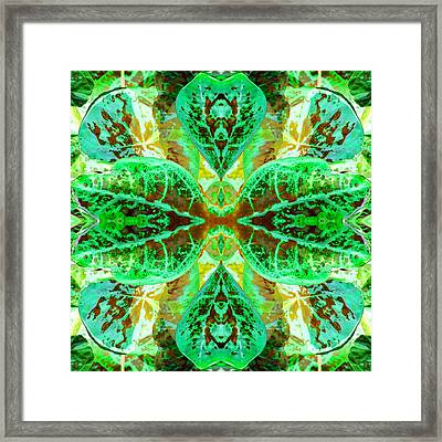 Green Leafmania 3 Framed Print by Marianne Dow