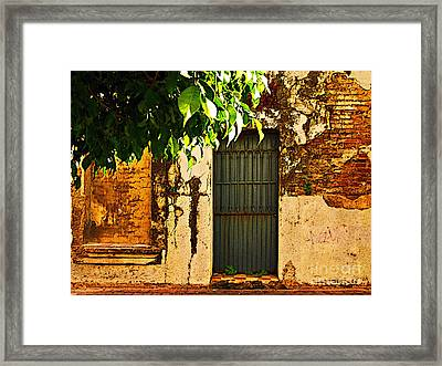 Green Leaves And Wall By Michael Fitzpatrick Framed Print by Mexicolors Art Photography