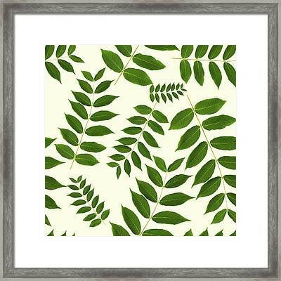 Framed Print featuring the mixed media Botanical Pattern by Christina Rollo