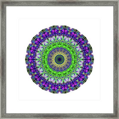 Green Light Mandala Art By Sharon Cummings Framed Print by Sharon Cummings