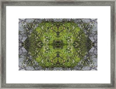Green Mandala Framed Print by Viktor Savchenko