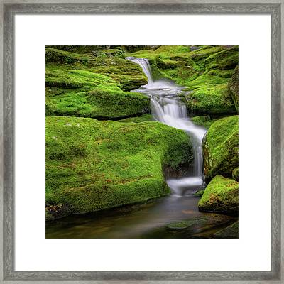 Green Moss Falls Square Framed Print