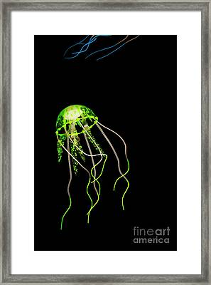 Green Neon Jellyfish Framed Print by Jorgo Photography - Wall Art Gallery