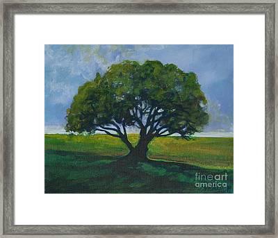 Green Oak Framed Print by Michele Hollister - for Nancy Asbell