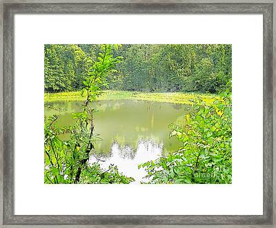 Green On Lake Framed Print