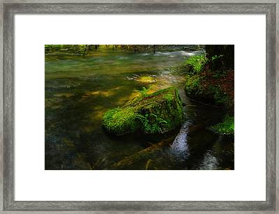 Green On The River Framed Print by Jeff Swan