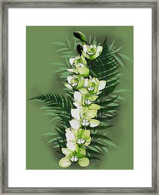 Green Orchid Framed Print