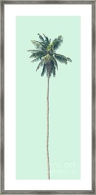 Green Palm Framed Print