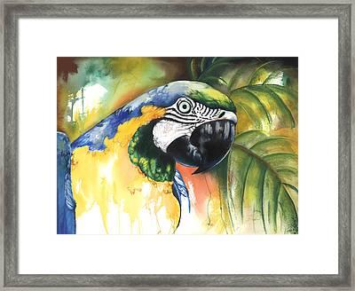 Green Parrot Framed Print by Anthony Burks Sr