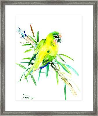 Green Parrot Framed Print by Suren Nersisyan