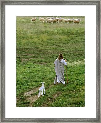 Green Pastures Framed Print by Vienne Rea