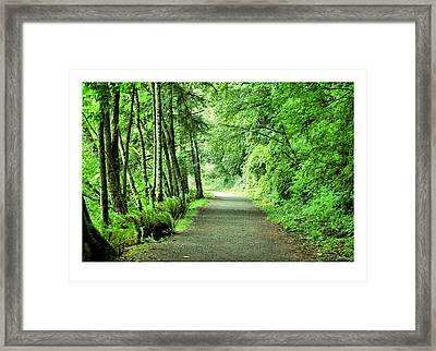 Green Path Framed Print by J D Banks