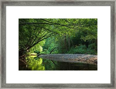 Green River Framed Print by Evgeni Dinev