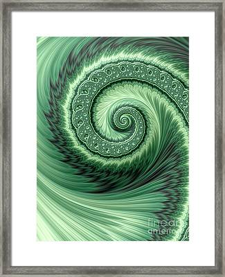 Green Shell Framed Print