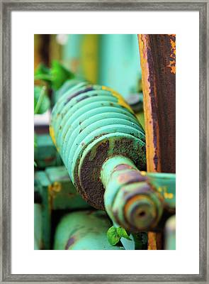 Green Spring Framed Print