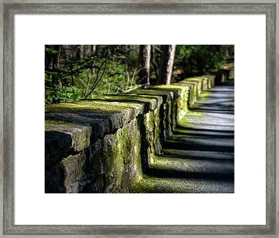 Framed Print featuring the photograph Green Stone Wall by James Barber