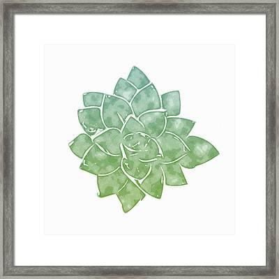 Green Succulent 1- Art By Linda Woods Framed Print