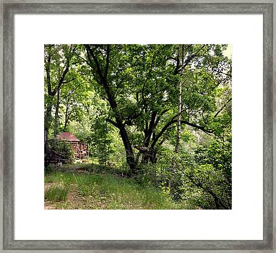 Green Summer Framed Print