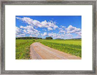 Green Summer II Framed Print