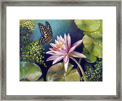 Green Tailed Jay Butterfly And Water Lily Framed Print by Nancy Tilles
