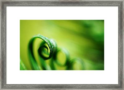 Green Tides Framed Print by Catherine Lau