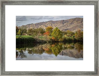 Green Tree Pond Reflection Framed Print