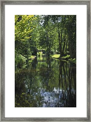 Green Trees Reflected In River Water Framed Print
