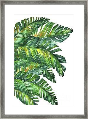 Green Tropic  Framed Print by Mark Ashkenazi