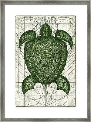 Green Turtle Framed Print by Charles Harden