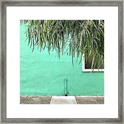 Green Wall With Leaves Framed Print