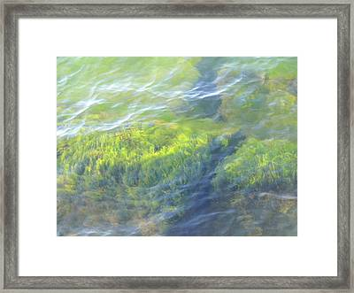 Framed Print featuring the photograph Green Water by Beth Akerman