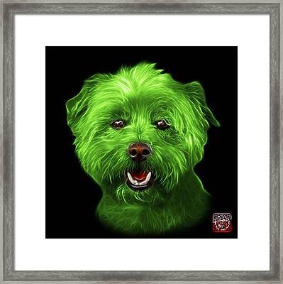 Green West Highland Terrier Mix - 8674 - Bb Framed Print
