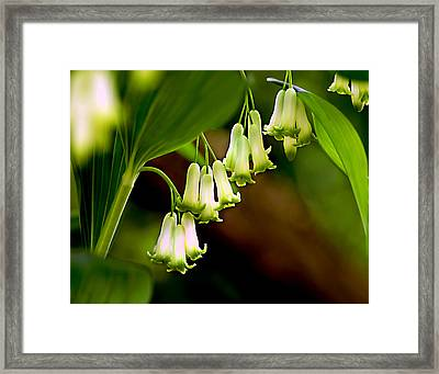 Framed Print featuring the photograph Green White Bells by JoAnn Lense