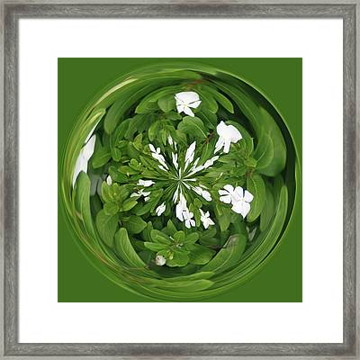 Framed Print featuring the photograph Green-white Orb by Bill Barber