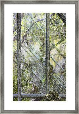 Green Windows Framed Print by Viktor Savchenko