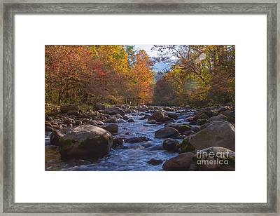 Greenbriar Creek Framed Print