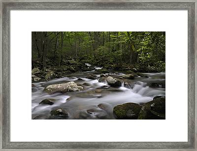 Greenbrier In The Great Smoky Mountains Framed Print by Darrell Young