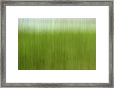 Greener Grass Framed Print by Doug Hockman Photography