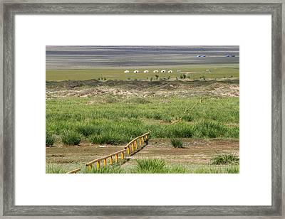 Framed Print featuring the photograph Greenery In Desert, Gobi, 2016 by Hitendra SINKAR