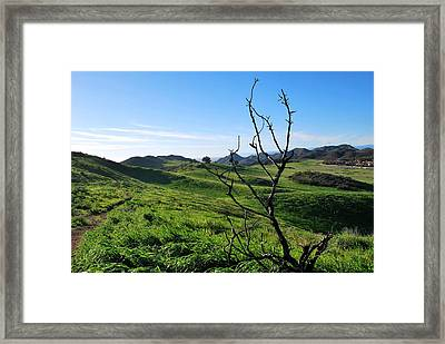 Framed Print featuring the photograph Greenery In The Hills Landscape by Matt Harang