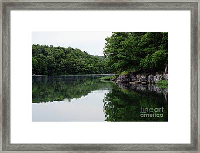Greenery Reflected Framed Print by Diane Friend