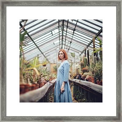 Greenhouse Framed Print by Dasha Pears