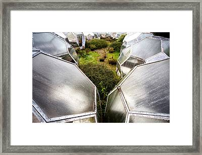 Greenhouse Effect - Urban Decay Framed Print