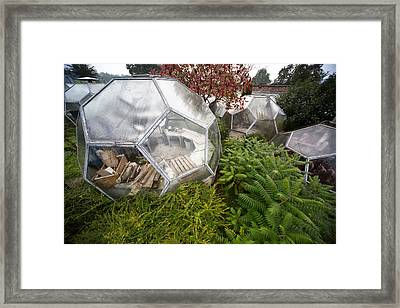 Greenhouse Experiment - Abandoned Buildings Framed Print